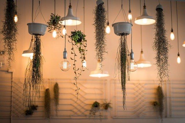 květináče a žárovky
